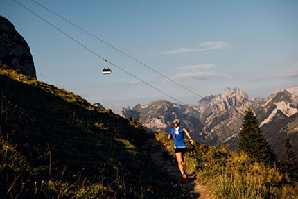 Red Bull Ridges Trail Running Infos Zum Event